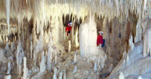 grottecastellana-speleonight-2-1-300x158
